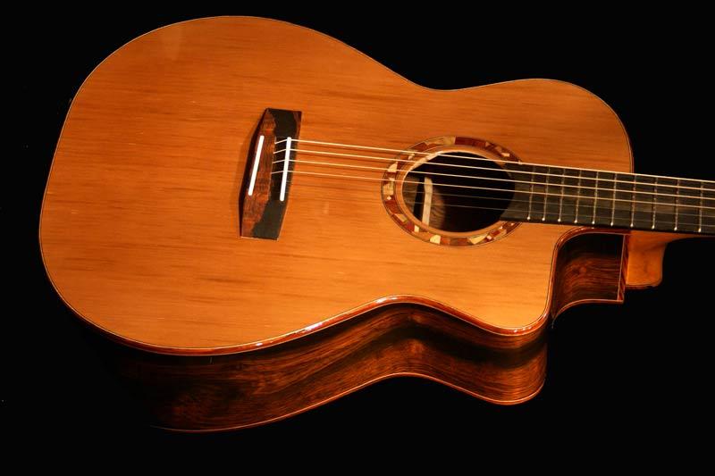 bz6-Guitar-Luthier-LuthierDB-Image-15